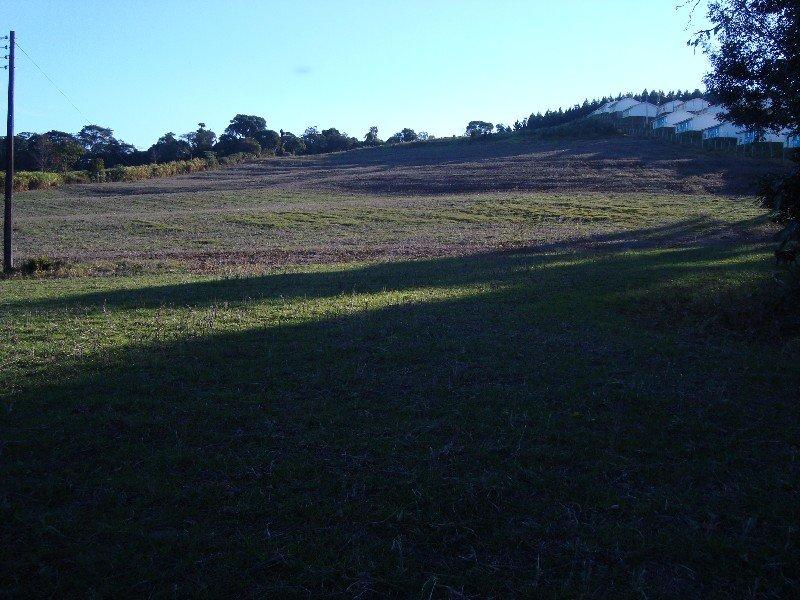 Área de Terra - Linha Monte Alegre